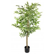 Artificial Ficus Tree With Variegation Leaves 2m