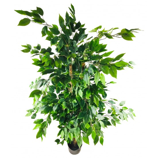 Artificial Ficus Tree With Pot 2m