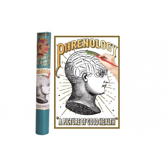 Phrenology Colouring Poster In Gift Tube