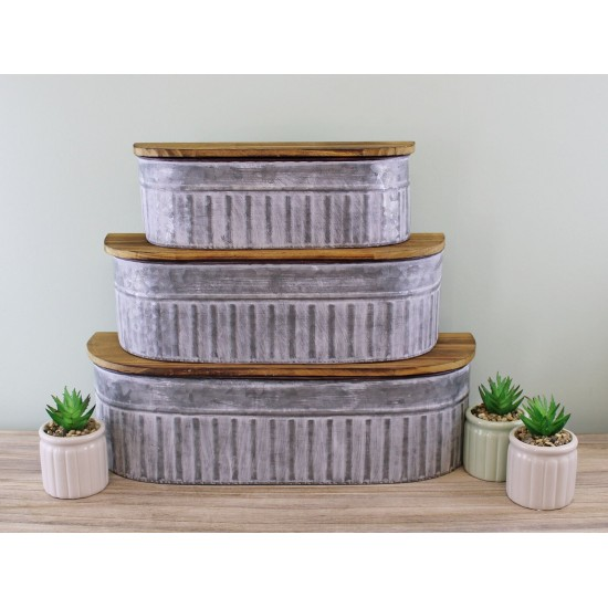 Set of 3 Potting Shed Storage Shelves