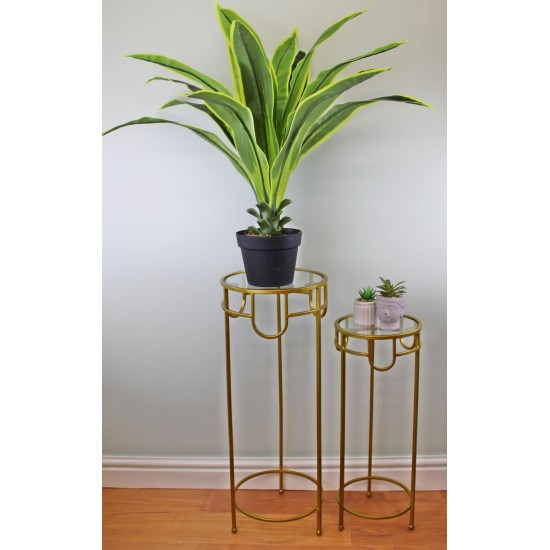 Set of 2 Glass Top, Gold Metal Plant Stands