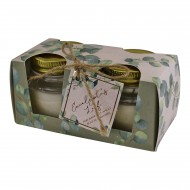 Set Of 2 Eucalyptus Leaf Fragranced Candles in Jars With Lids, Gift Boxed